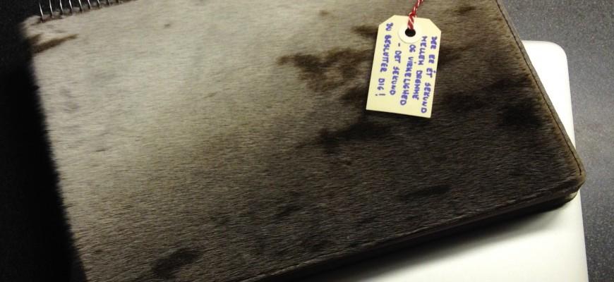 Lena notesbog